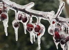 Il freddo e il corpo di calore