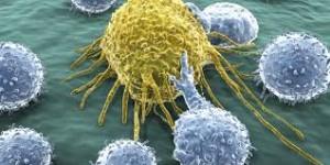 Curare i tumori: uno sguardo verso il futuro