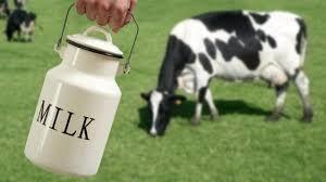 E' giusto che gli adulti bevano latte?
