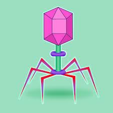 L'era dei virus: qualche anticipazione sul futuro prossimo